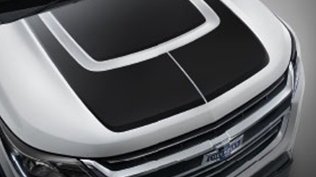 Body Side Molding Black